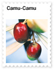 Camu-Camu – Powerful Antioxidant Superfood from Peru